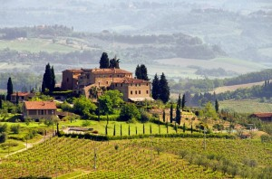 1563565-toskana-weingut-tuscany-vineyard-03